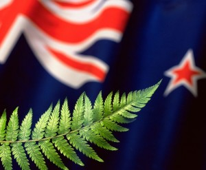 New Zealand Photo