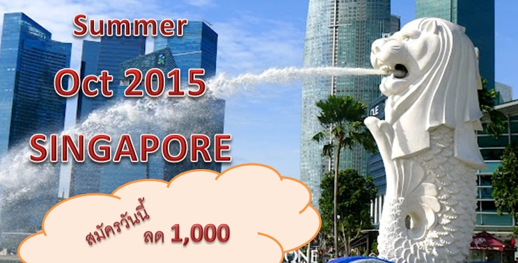 Summer_singapore_learning curve